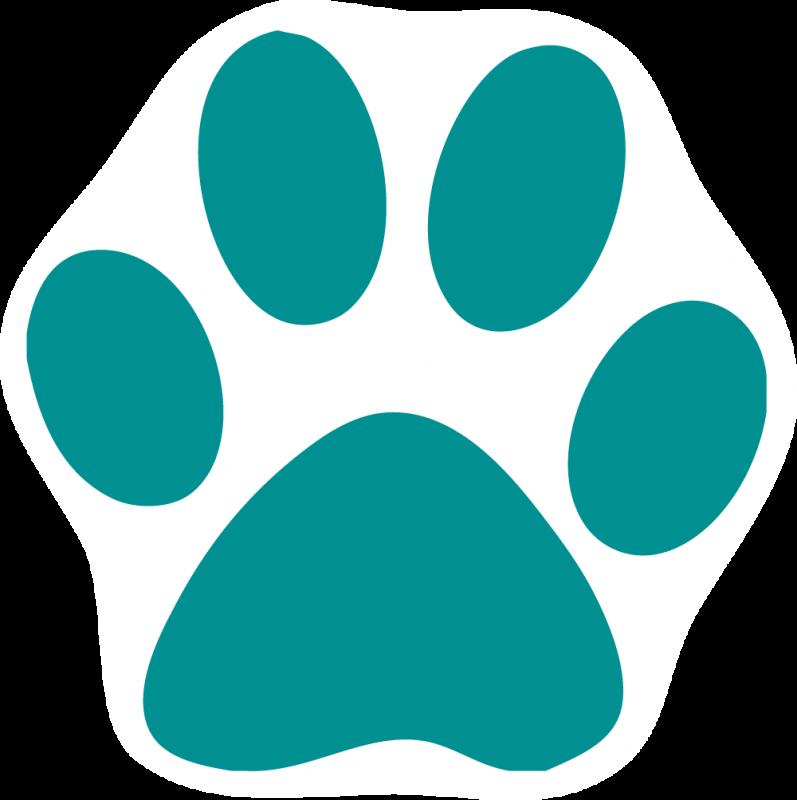 Pfote Hund Hundefutter