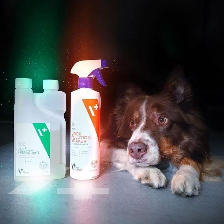 VetExpert Odor Solution Hund Tierarztbedarf, Veterinärbedarf, Veterinärmedizin, Praxisbedarf, Ergänzungsfuttermittel, Tierarztprodukten, Tierapotheke, Tierpflegeprodukte