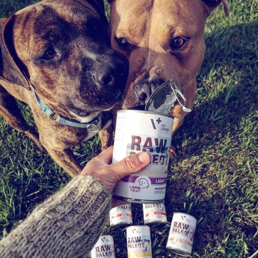 Raw Paleo Hundefutter Nassfutter Light