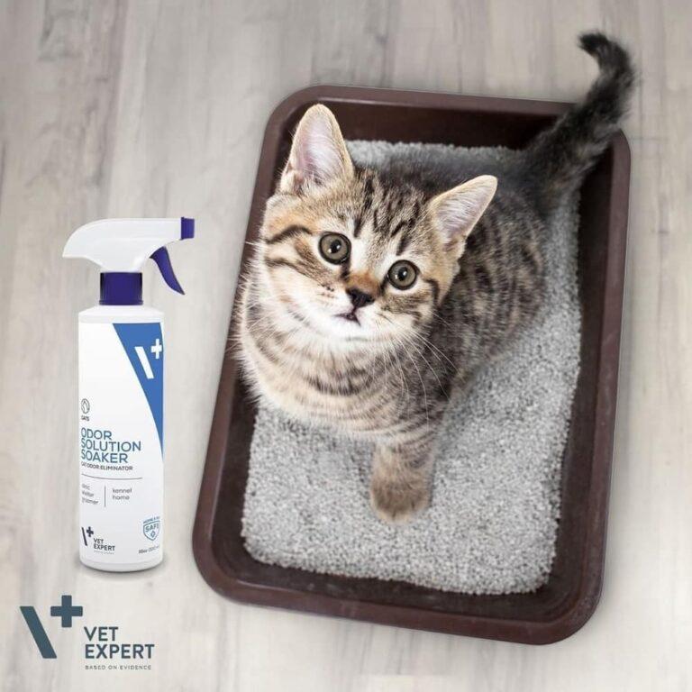 VetExpert Odor Solution Katze Tierarztbedarf, Veterinärbedarf, Veterinärmedizin, Praxisbedarf, Ergänzungsfuttermittel, Tierarztprodukten, Tierapotheke, Tierpflegeprodukte Geruchsentferner für Katze Katzenurinentferner