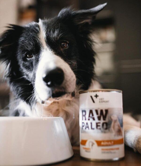 Raw Paleo Adult Hundefutter Nassfutter