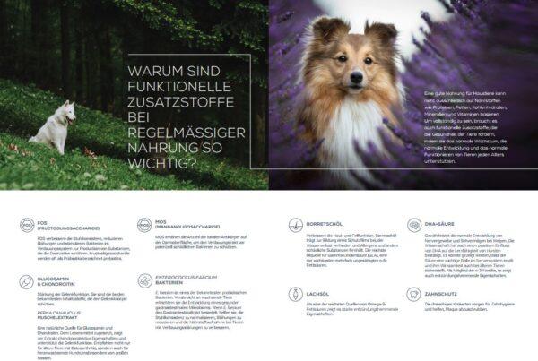 VetExpert Raw-Paleo Hundefutter Vorteile Hundefutter
