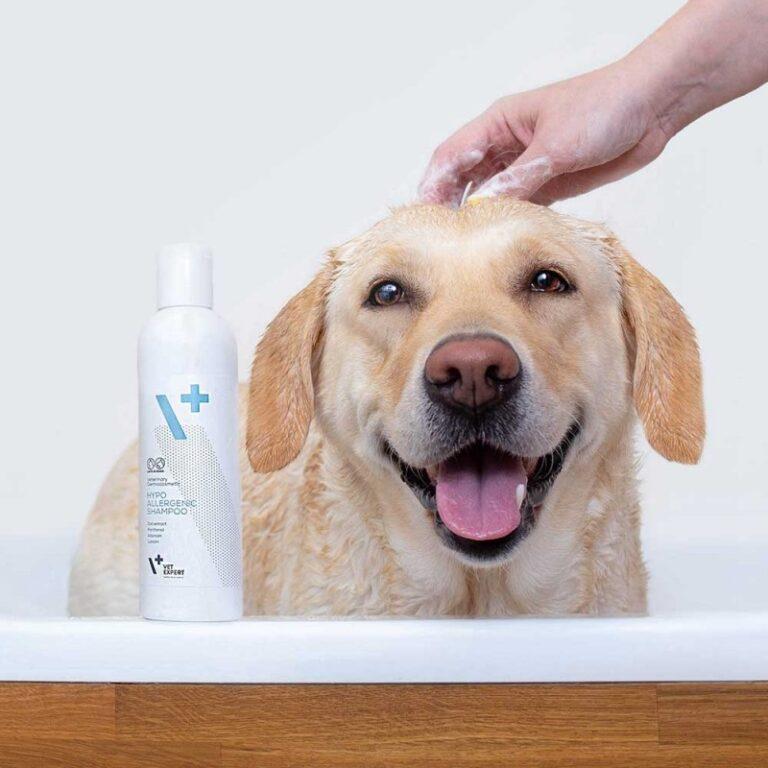 VETEXPERT hypoallergenic-shampoo-hipoallergenic shampoo